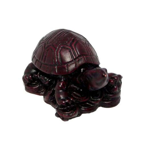 Szent teknős szobor